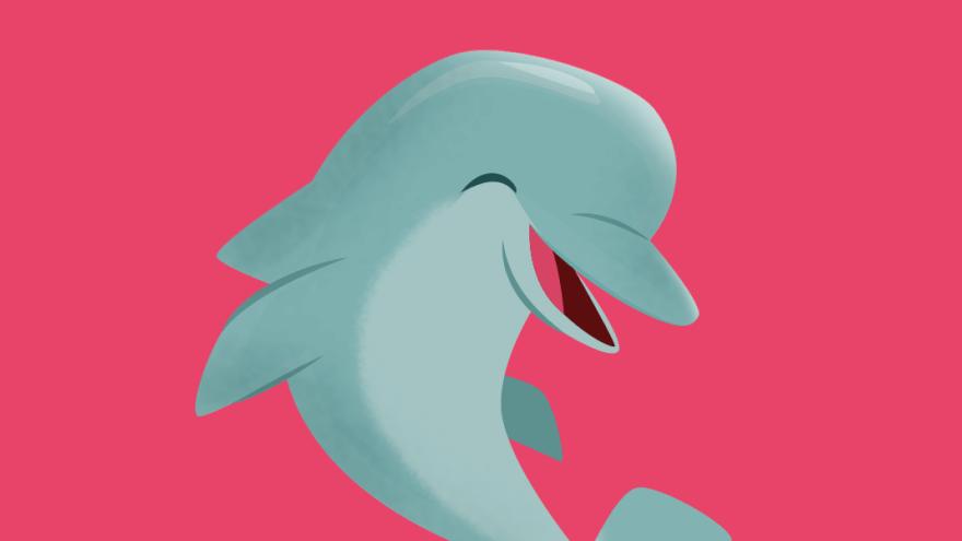 Golfinho Animais Marinhos