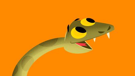 Cobra Sucuri Animais da Cloresta