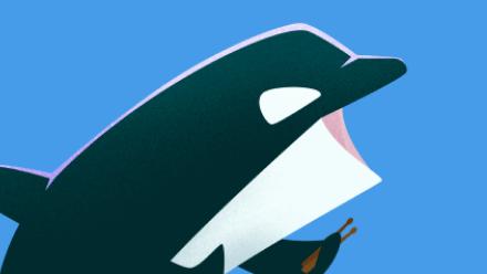 Baleia Orca Animais do Gelo