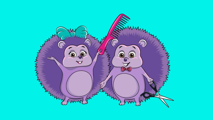 Ouriços Cabeleireiros